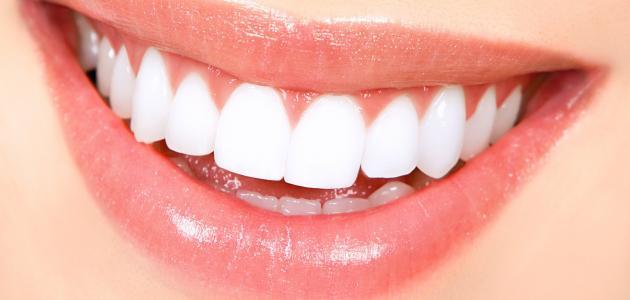 كم عدد الأسنان الطبيعية