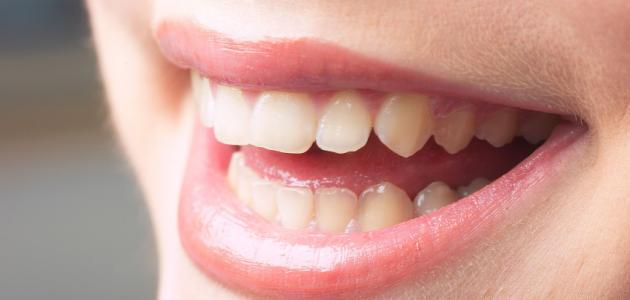 ظهور الأسنان الدائمة