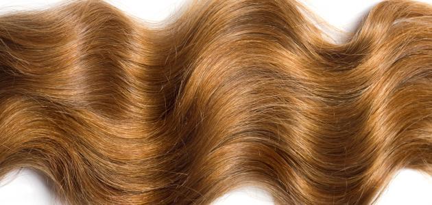 طريقة إطالة الشعر وتنعيمه
