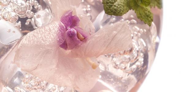 فوائد شرب ماء الزهر