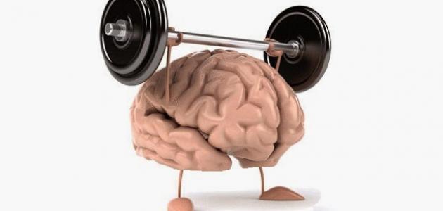 فوائد الرياضة للعقل - فيديو