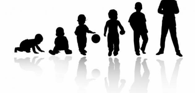 خصائص مراحل النمو المعرفي