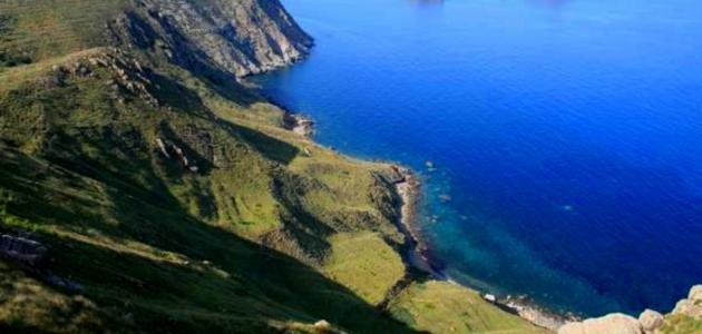 جزيرة جالطة
