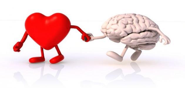 الفرق بين القلب والعقل